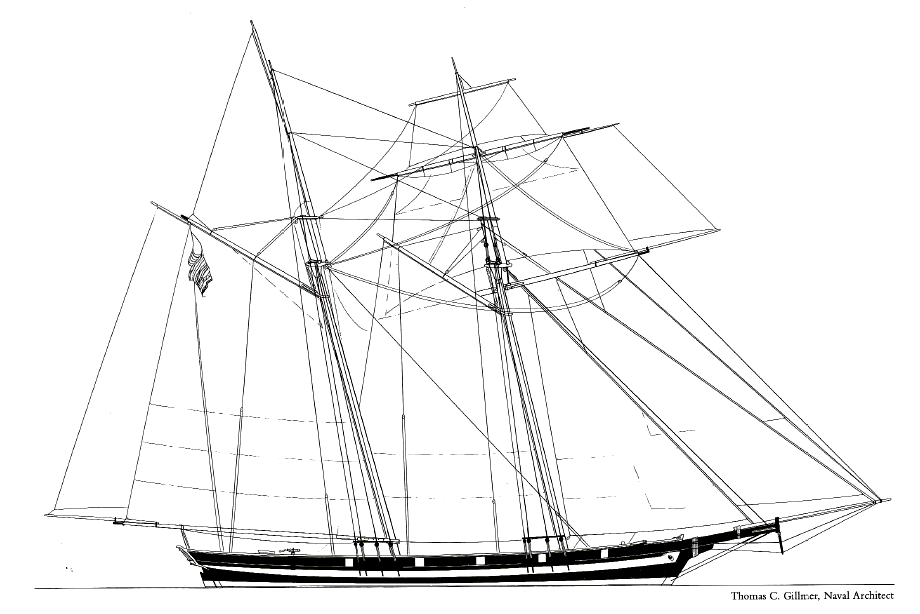 History-Pride2-Line-Drawing-Gillmer