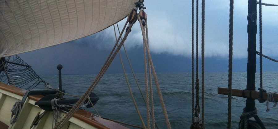 Squall on the Horizon, 2014