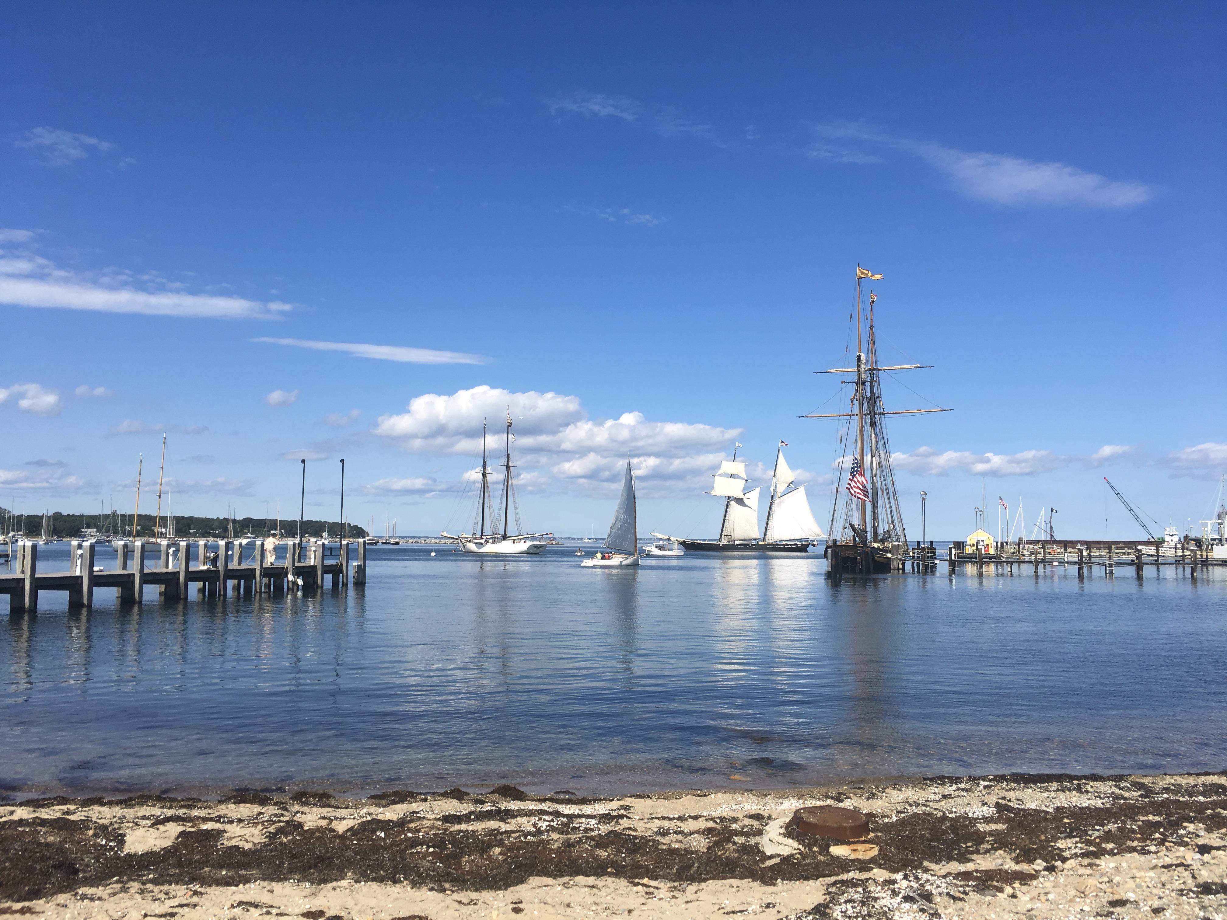 View of Vineyard Haven Harbor