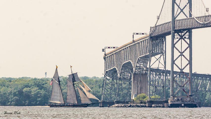 Bay Bridge Sailing